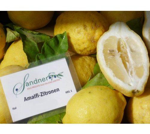 Verkostung – Amalfi-Zitrone im Sandner-Webshop