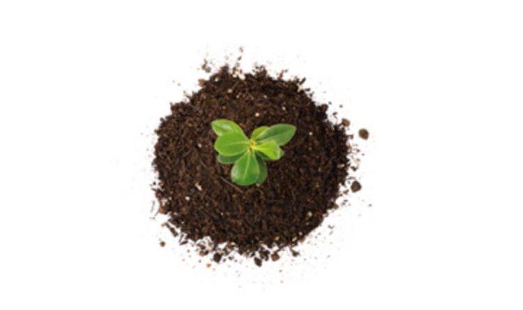 Die Verbraucher Initiative e.V. zum Thema guter Boden für nachhaltige Landwirschaft