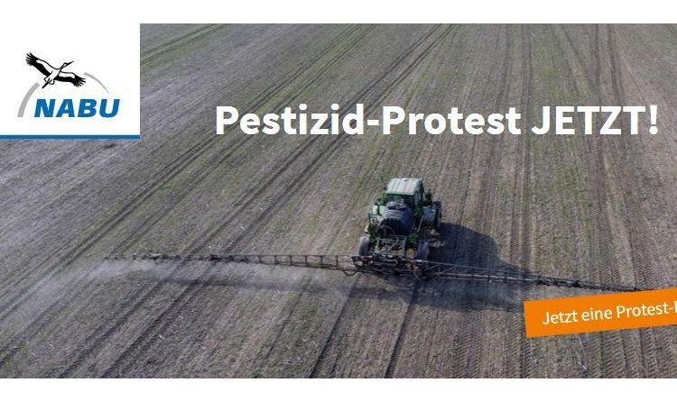 Der NABU appelliert an die EU-Parlamentarier – Kein Glyphosat & Co. auf ökologischen Vorrangflächen