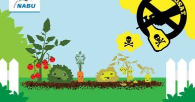 NABU Zahl des Monats: Ab 2018 sind acht Millionen Hektar landwirtschaftliche Fläche pestizidfrei
