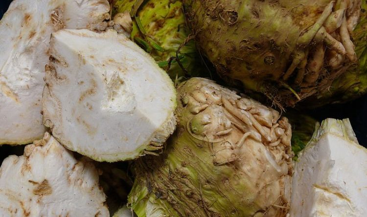 Unterschätztes Gemüse – Knollensellerie