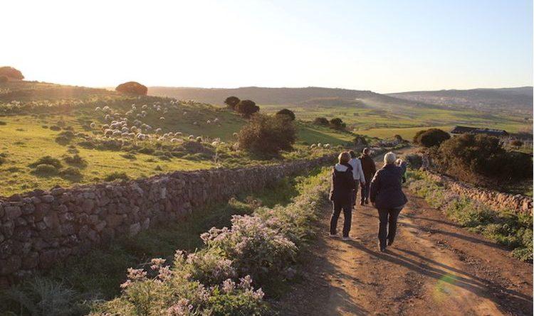 Kulinarische Entdeckungsreise in Sardinien mit Sapio