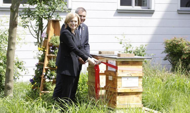 """""""Blüht hier was? Stadt und Land gemeinsam für Bienen!"""""""