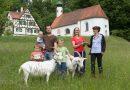 "Ziegenhof Ensmad erhält ""Bronzene Käseharfe 2017/2018"""