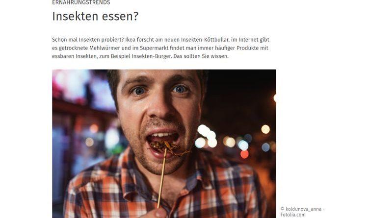 Würmer im Burger – was ist von Insekten als Nahrungsmittel zu halten?