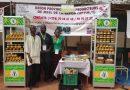 Honig aus Burkina Faso ist 5.000ster Slow Food Arche-Passagier