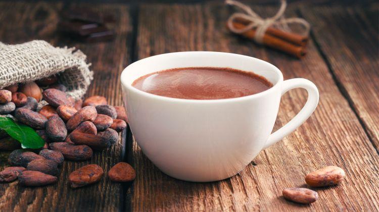 Eine Kakao-Tour durch die Welt: Von Brasilien über Vietnam bis nach Australien
