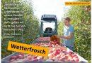 Wetterfrosch Obstbauer - Foto: RLV