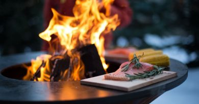 Kreisrundes Kocherlebnis - Der Ofyr-Grill, Foto: Ofyr