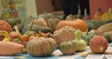 Slow Food Terra Madre Tag - Verlust von Biodiversität wird Milliarden kosten - Foto: Slow Food