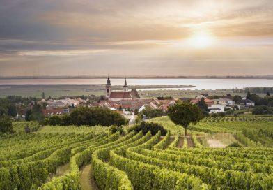 Neue österreichische Herkunftsbezeichnung - Neusiedlersee DAC - Foto: Marcus Wiesner/Österreich Wein Marketing