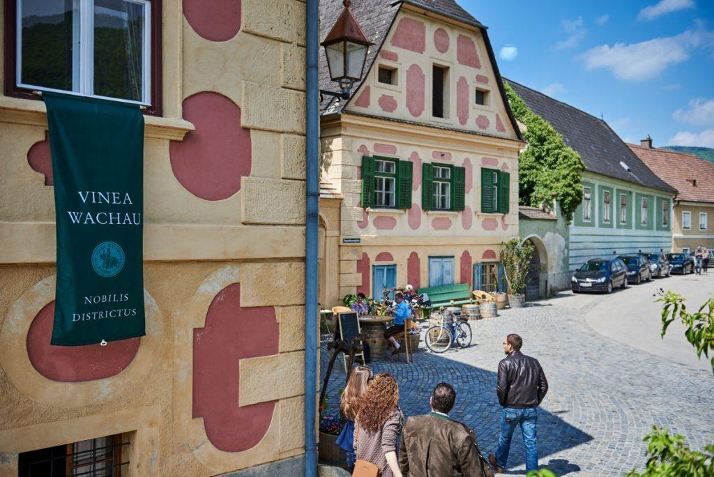 Wachauer Weinherbst - Foto: inea Wachau Nobilis Districtus